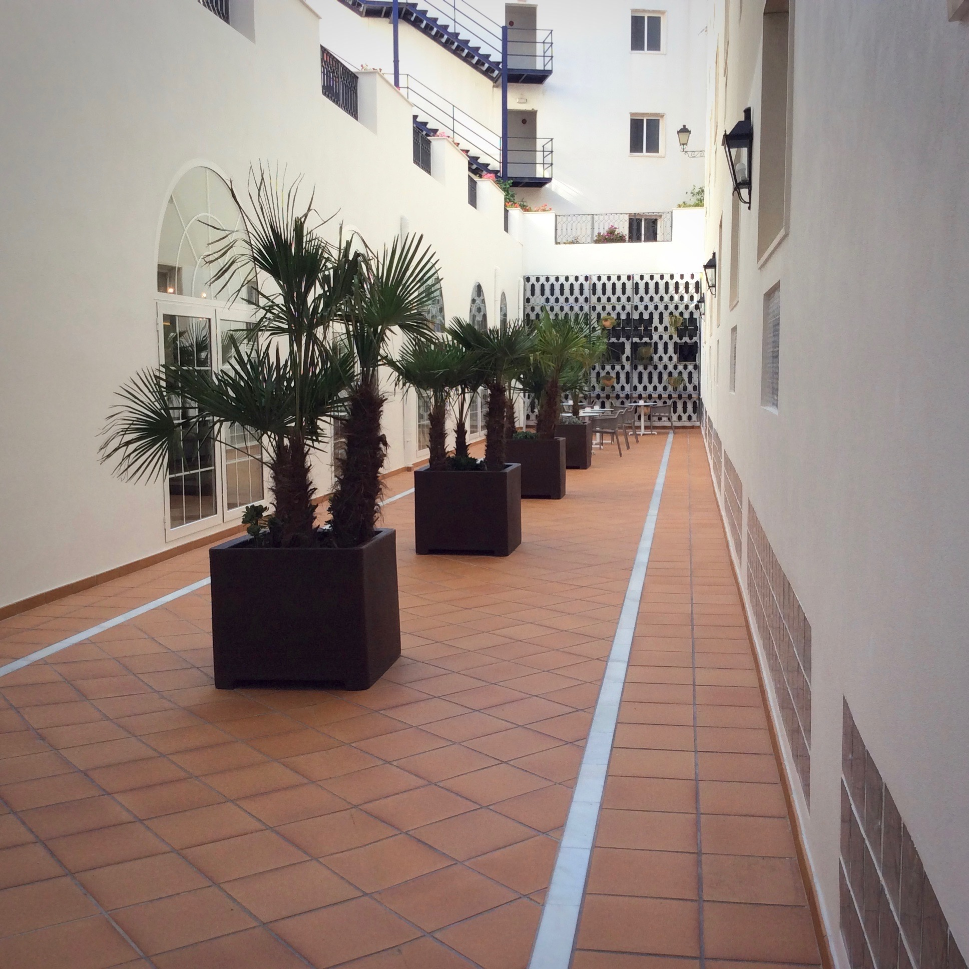 patio-hotel-monte-triana-sevilla