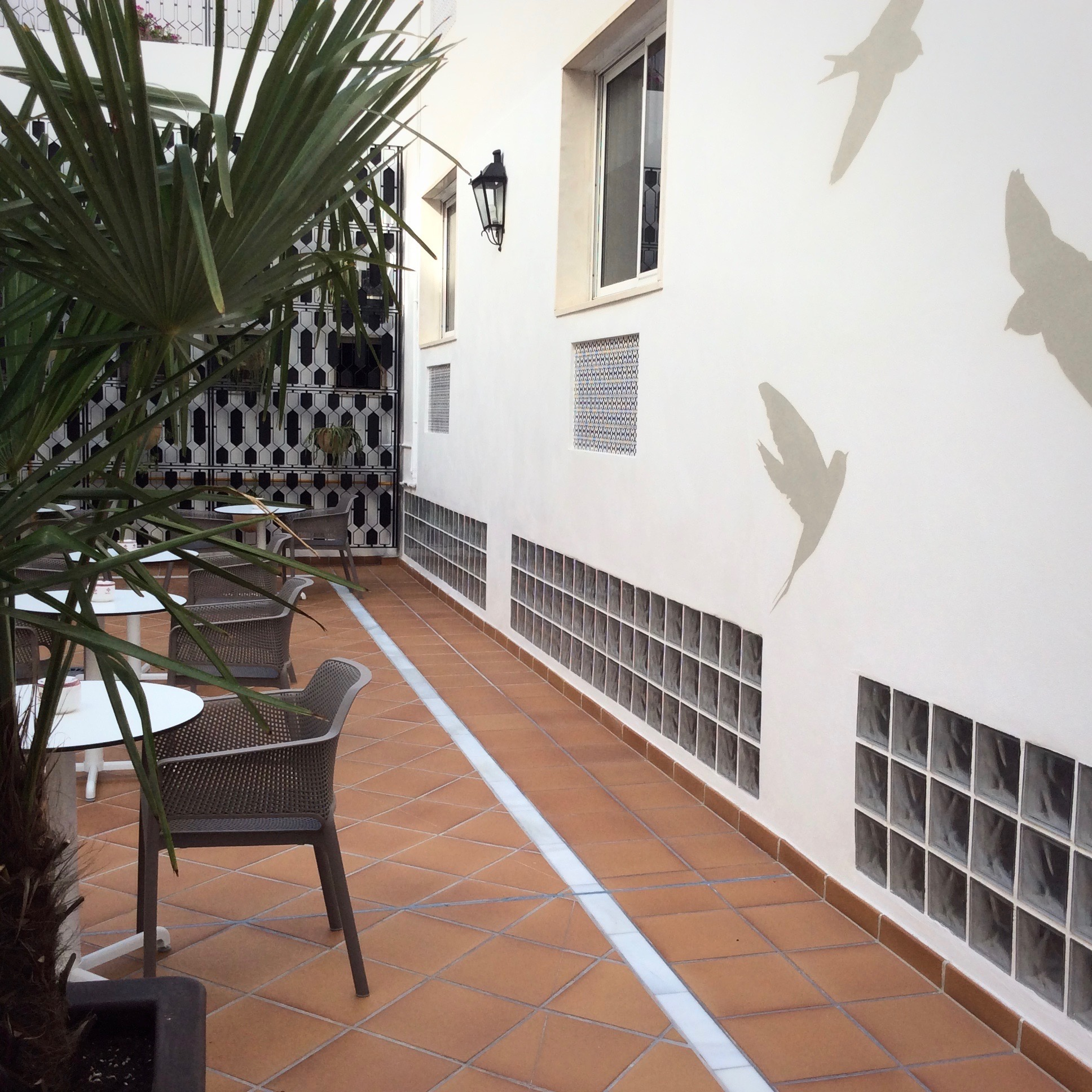 patio-hotel-monte-triana-vista-pajaros